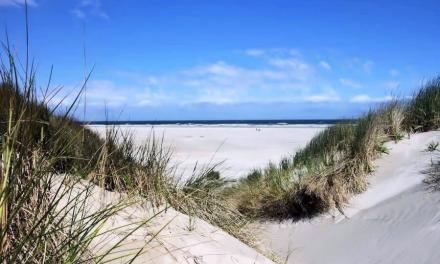 Beach and dunes of Egmond
